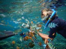 bali-beach-snorkeling